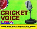 Cricket Voice Logo